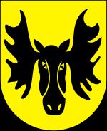 kominiarz Wasilków